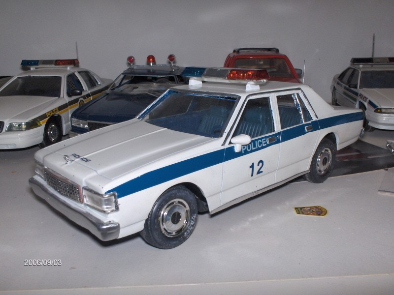 pick up de police 310