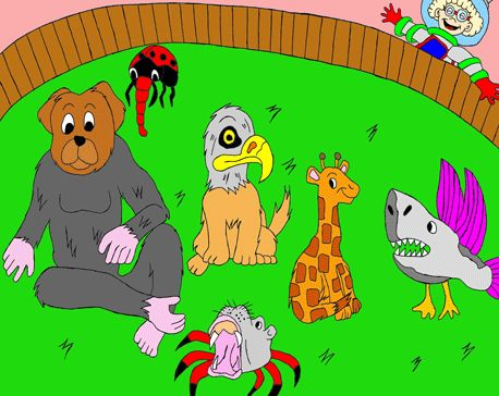 Les rêves merveilleux de Akim Zoo-ex13