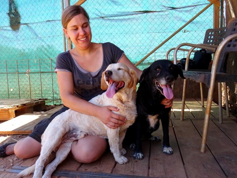 Mirinda und Pepe von den Sonnenhunden  Pepe410