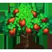 Vous cherchez un arbre ? Venez cliquer ici !!! Cashew13