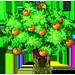 Vous cherchez un arbre ? Venez cliquer ici !!! Mandar10