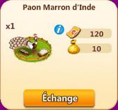 Paon Marron d'Inde => Plume de Paon Marron d'Inde Sans_576