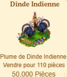 Dinde Indienne Sans_652