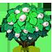 Vous cherchez un arbre ? Venez cliquer ici !!! Silkwo11