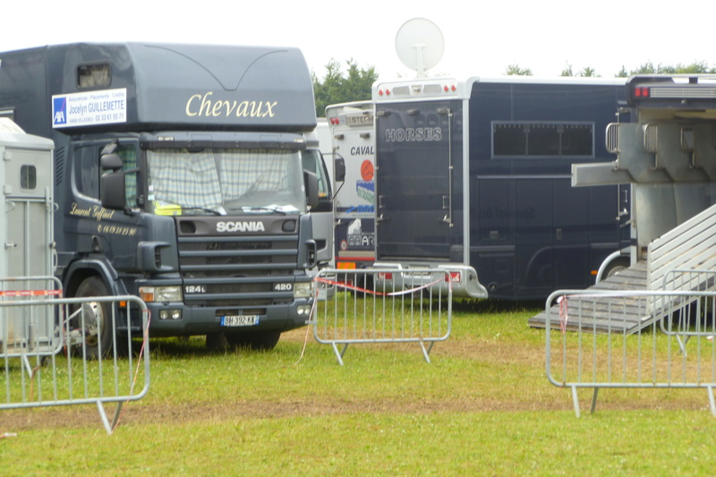 VEHICULES TRANSPORT DE CHEVAUX         VAN  Scania10