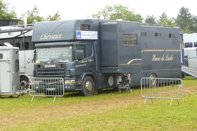 VEHICULES TRANSPORT DE CHEVAUX         VAN  Scania11