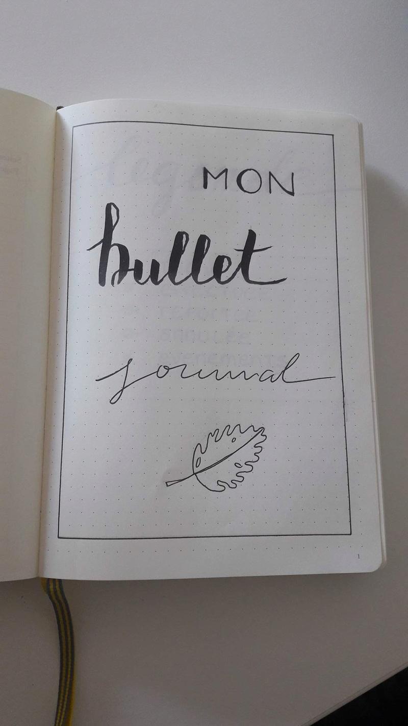 Votre bullet journal - Page 3 21729810