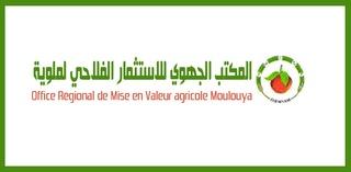 المكتب الجهوي للاستثمار الفلاحي لملوية : مباراة لتوظيف 15 منصب في عدة درجات آخر أجل لإيداع الترشيحات 7 شتنبر 2017 2016-010