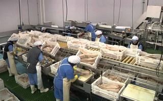 مصنع تصبير اسماك Societe argob fish : توظيف 50 عاملة تصبير اسماك بدون دبلوم Argob_10