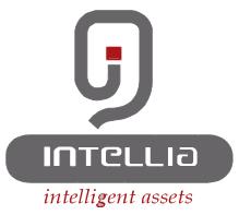 شركة INTELLIA : اعلان توظيف 70 منصب (Opérateurs/Opératrices De Saisie) بمدينة انزكان ايت ملول و تزنيت Logo12