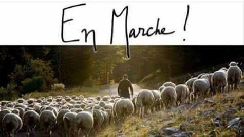 EN MARCHE...ARRIERE... AVEC MARGUERITE DESPREZ deputée - Page 2 18157110