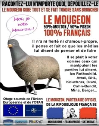 EN MARCHE...ARRIERE... AVEC MARGUERITE DESPREZ deputée - Page 2 2017-011