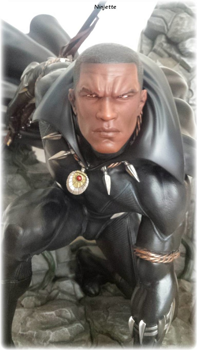 Premium Collectibles : Black Panther - Page 8 Xm161010