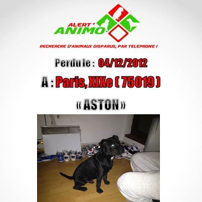 Perdu ou volé ASTON staff 64634_10