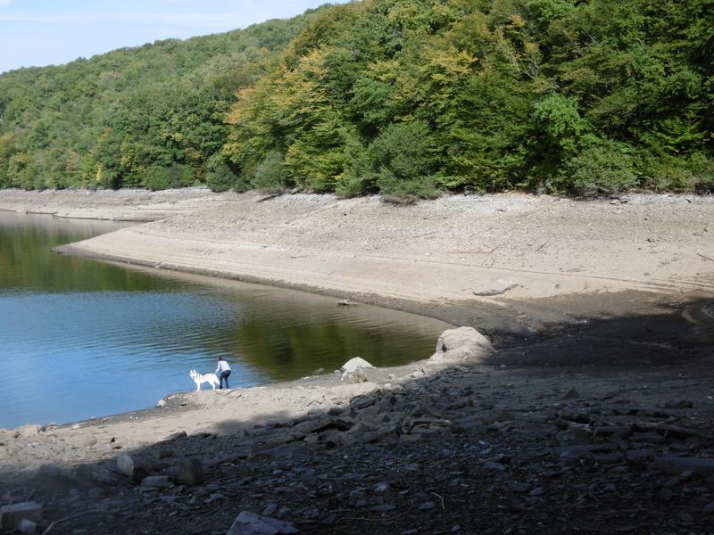 Lac à moins 8 mètres en 2017  P1000625