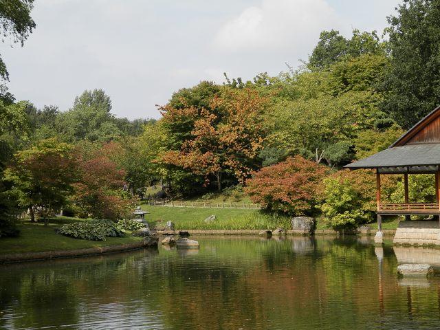Visite Jardin japonais à Hasselt (limbourg belge) Japon110