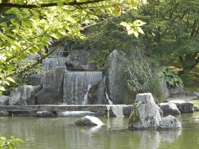 Visite Jardin japonais à Hasselt (limbourg belge) Japon410