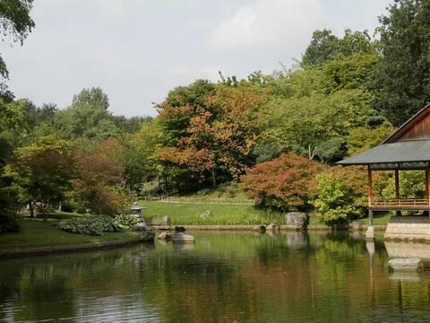 Visite Jardin Japonais A Hasselt Limbourg Belge