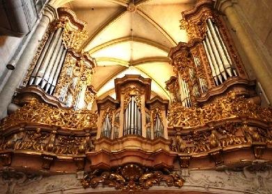 Orgue baroque germanique -instruments et répertoire Vienne10