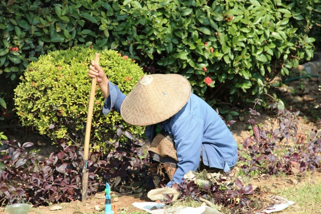 quelques jours à Vientiane Img_1712