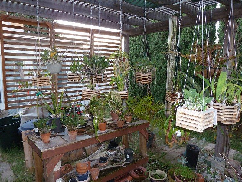 amenagement futur pour mes plantes pendant la belle saison House012