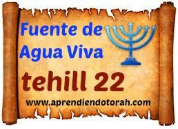 tehill 22 - Un grito de Angustia y un canto de Exaltación 2210
