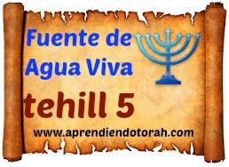 tehill 5 - tefilá'h pidiendo protección 511