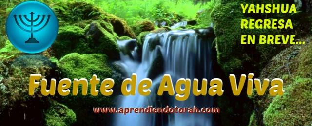 Fuente de Agua Viva Fuente10