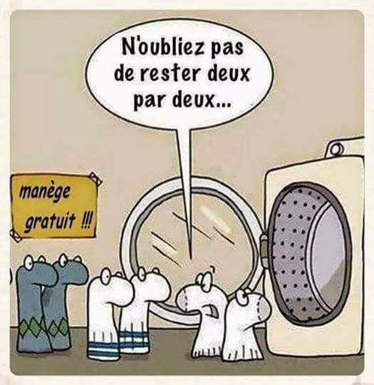 humour - Page 38 21740310