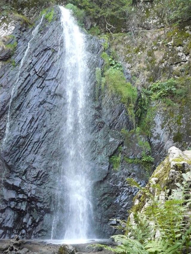 Balade dans les monts Dore (63) P1380010