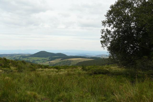 Balade dans les monts Dore (63) P1380213