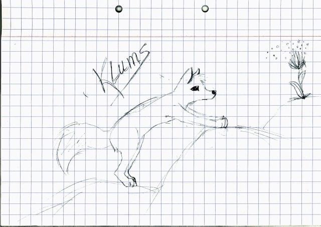 Le renard fou est parmi vous :D  Flo512