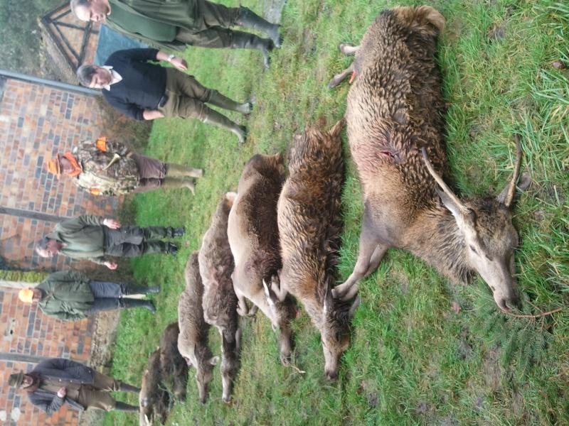 Saison de chasse au Grand Gibier 2012/2013 - Page 39 Photo010