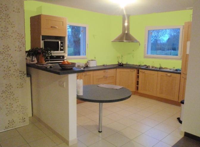 Comment colorer et décorer ma cuisine-salon-SAM esprit nature Captur16