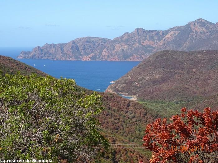 [Autres voyages/France] le tour de la Corse en voiture en 15 jours - Page 2 Dsc07311