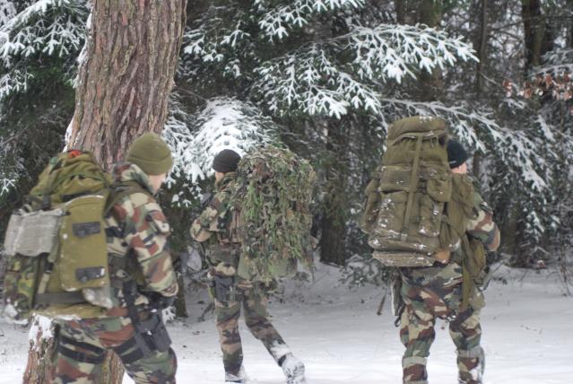 12/2012, dans la neige, forêt + urbain Dsc_0110
