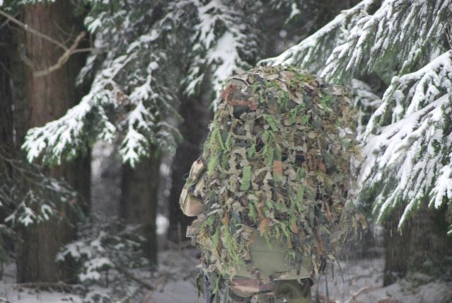 12/2012, dans la neige, forêt + urbain Dsc_0111