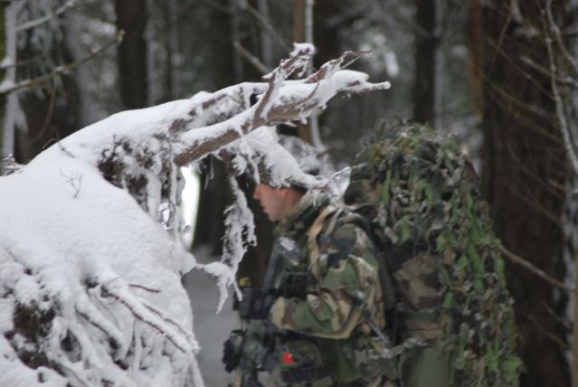 12/2012, dans la neige, forêt + urbain Dsc_0112
