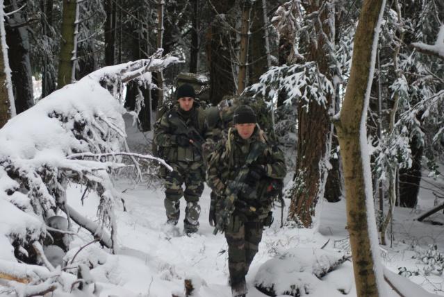 12/2012, dans la neige, forêt + urbain Dsc_0113