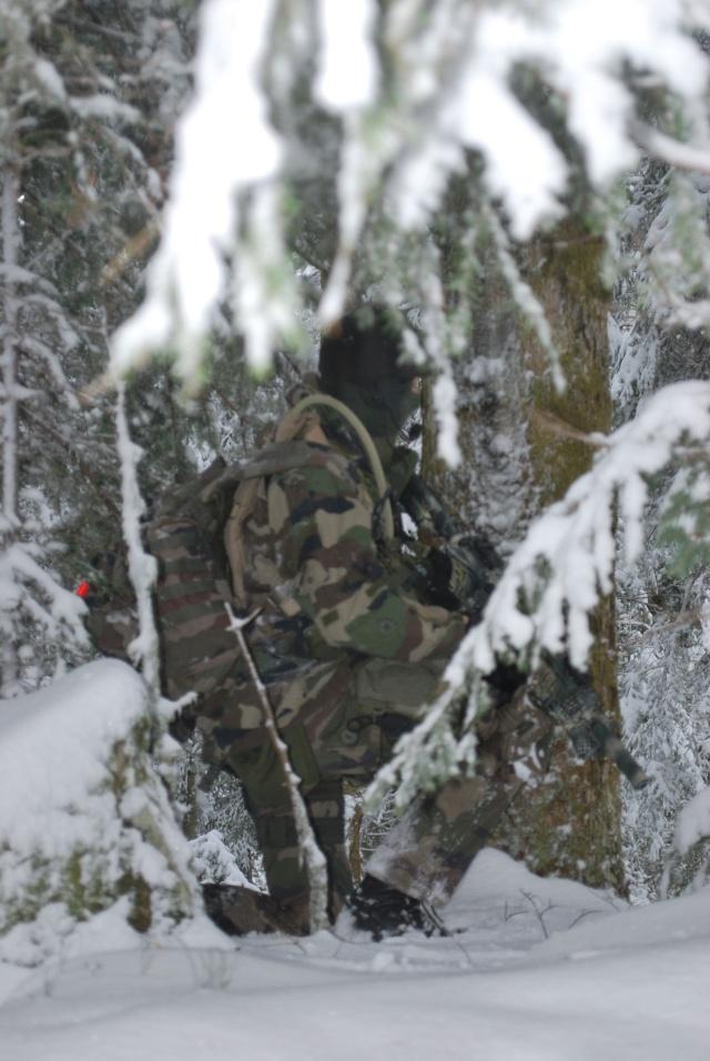 12/2012, dans la neige, forêt + urbain Dsc_0114