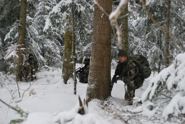 12/2012, dans la neige, forêt + urbain Dsc_0117
