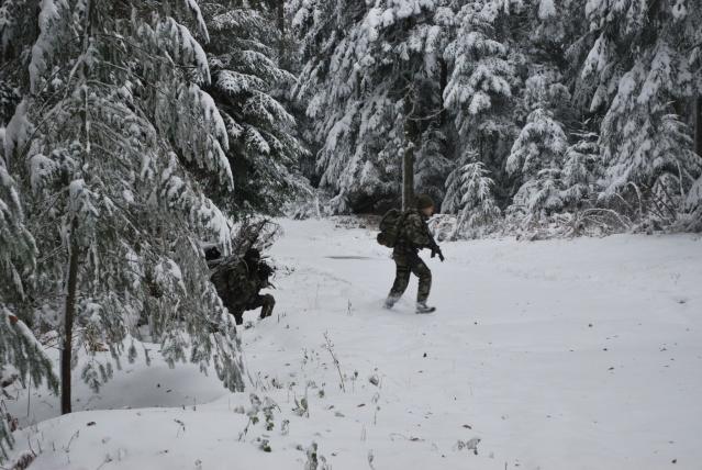 12/2012, dans la neige, forêt + urbain Dsc_0118