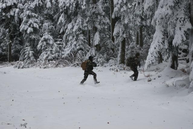 12/2012, dans la neige, forêt + urbain Dsc_0119