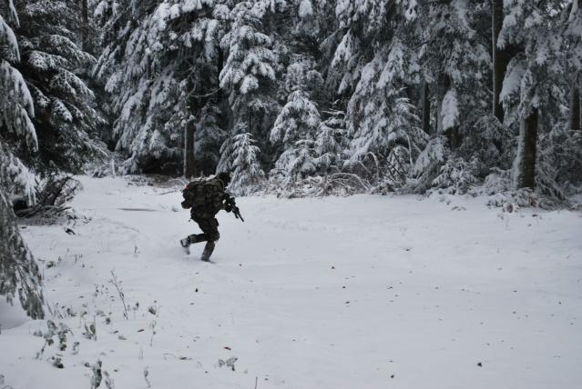 12/2012, dans la neige, forêt + urbain Dsc_0121