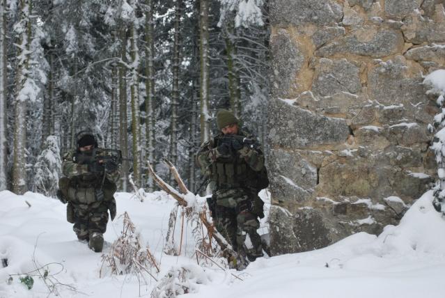 12/2012, dans la neige, forêt + urbain Dsc_0123