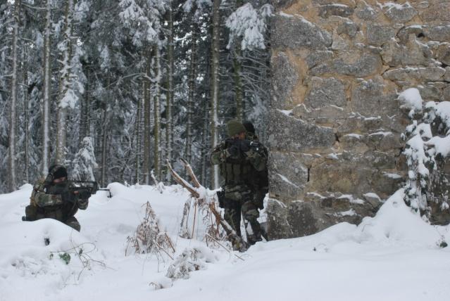 12/2012, dans la neige, forêt + urbain Dsc_0124