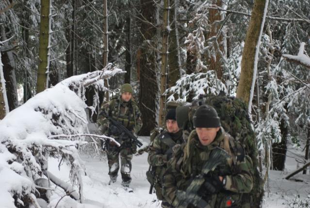 12/2012, dans la neige, forêt + urbain Dsc_0210