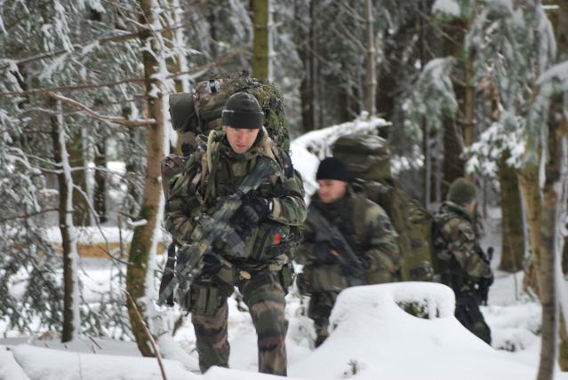 12/2012, dans la neige, forêt + urbain Dsc_0211