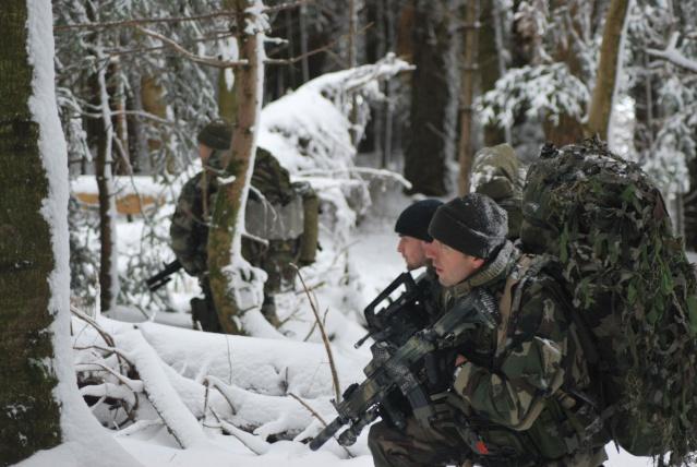 12/2012, dans la neige, forêt + urbain Dsc_0212