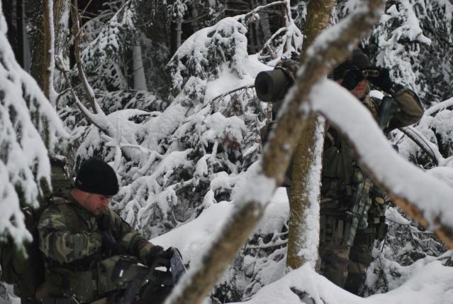 12/2012, dans la neige, forêt + urbain Dsc_0213